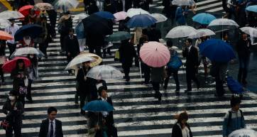 shibuya-rain