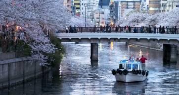 hanami boat