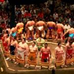 sumo in tokyo