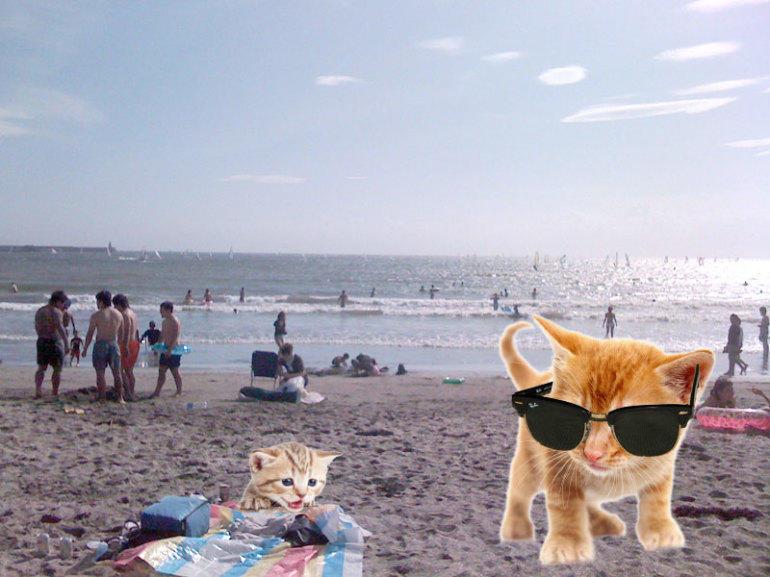 On the beach near Tokyo