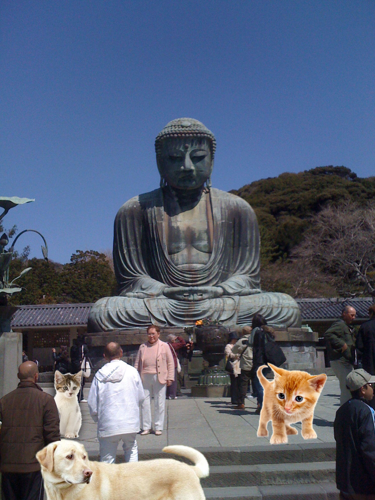 Kamakura Hiking and a Hidden Mountain Cafe