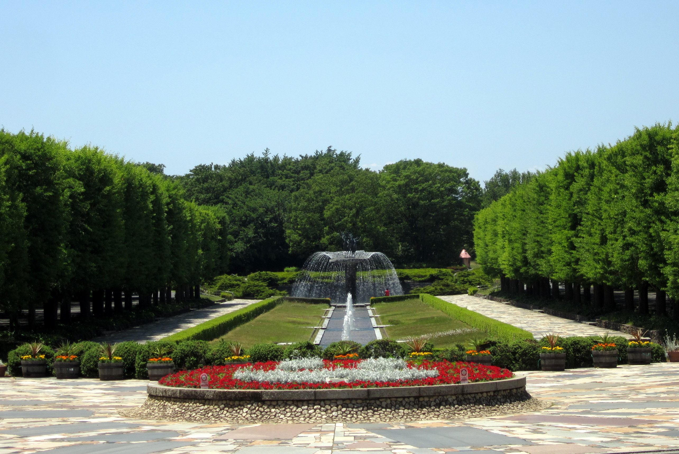 Showa Kinen Park: Free Family Fun in Tachikawa