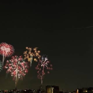 Cheapo Weekend for July 27/28: Thai Fair, Shinjuku Eisa and the Sumidagawa Fireworks Festival