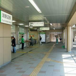 Fuchinobe