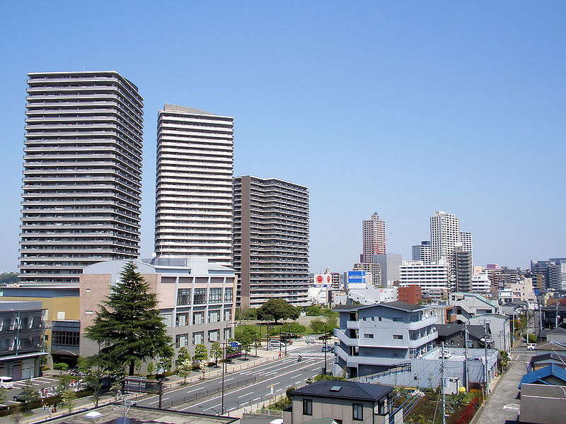 Hashimoto Guide