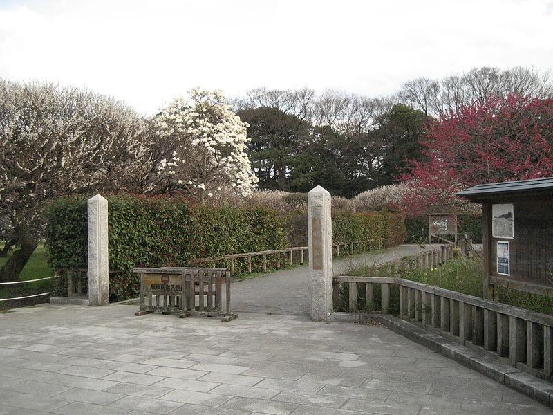 Koshigaya Guide