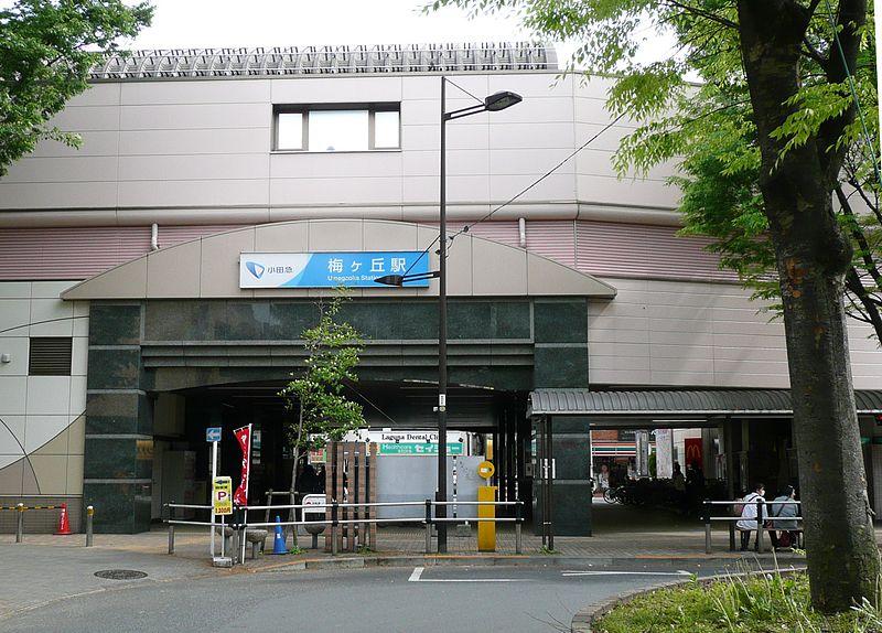 Umegaoka Guide