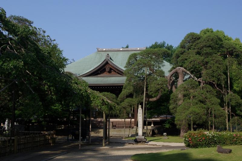Matsudo Guide