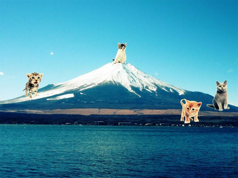 Tokyo Day Trips - get a nice view of mount fuji on a hakone day out