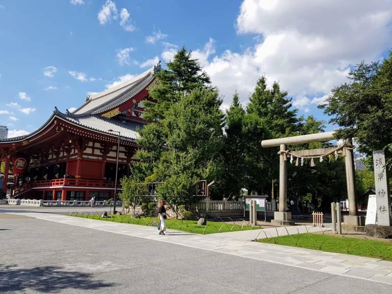 Asakusa Shrine main torii