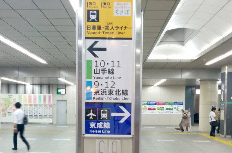 nippori transfer