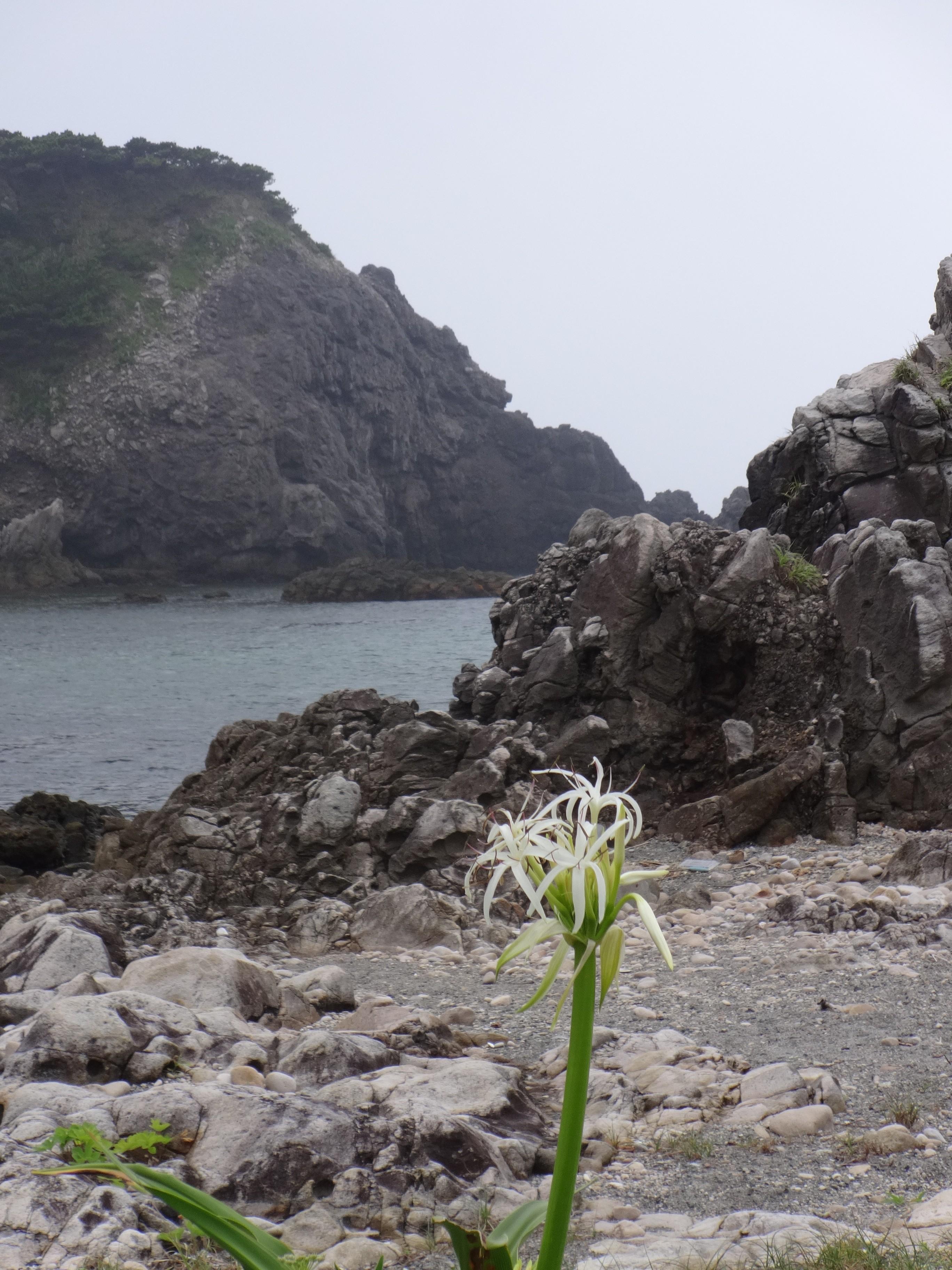 Shikine-jima Guide