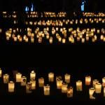 washi candle garden toyko