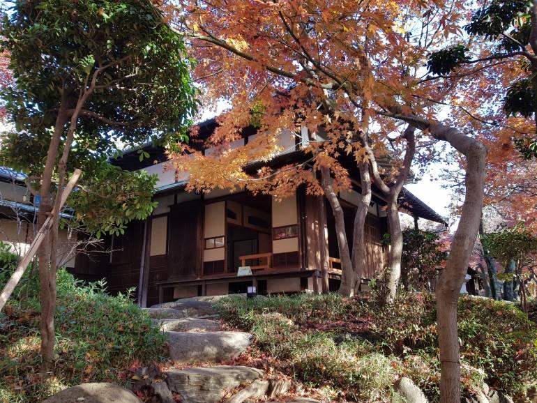 View of Kyu-Asakura House from the garden