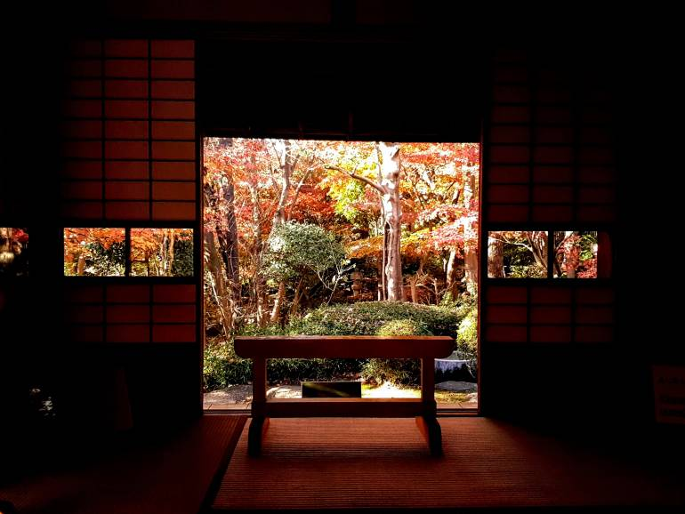 View from the Suginoma (cedar rooms)