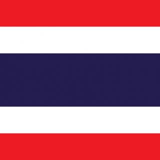 Thai National Day Festival