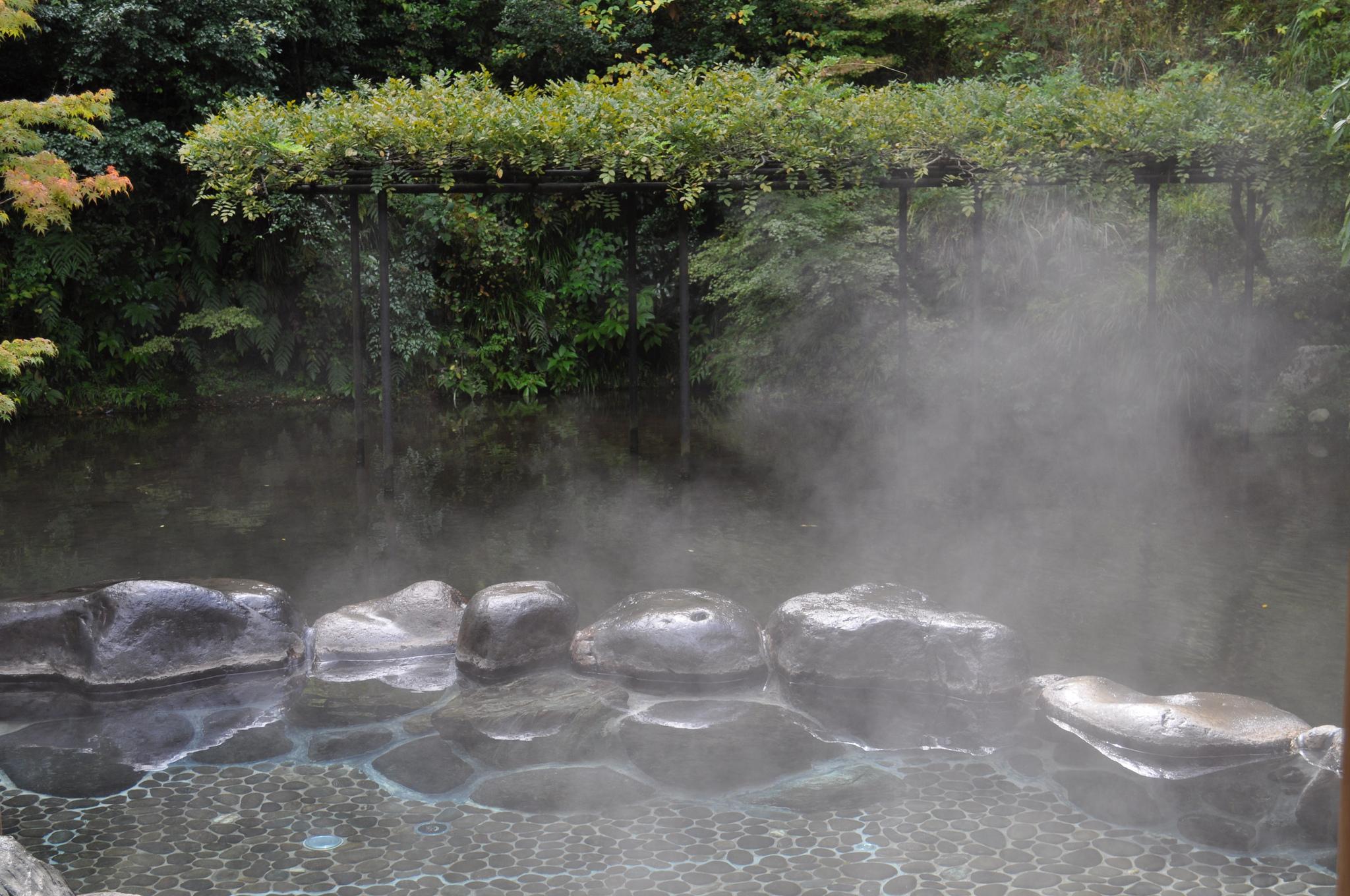 Bargain Bathing: Onsen in Tokyo