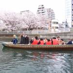 wasen boat edo fukagawa sakura cherry blossom