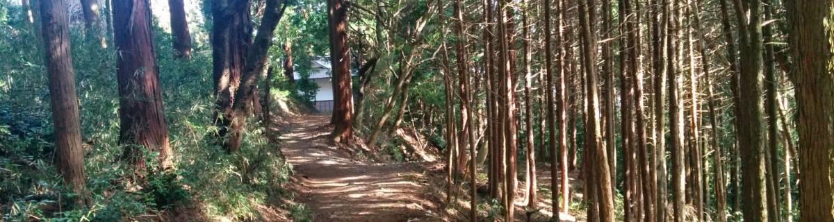 Hiking Near Tokyo - Koburi Pass