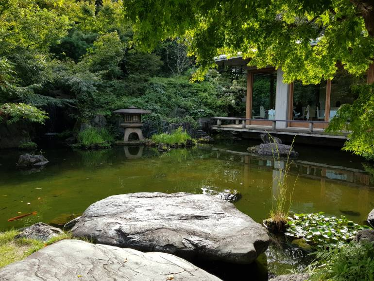 Pond with trees and carp at International House Roppongi