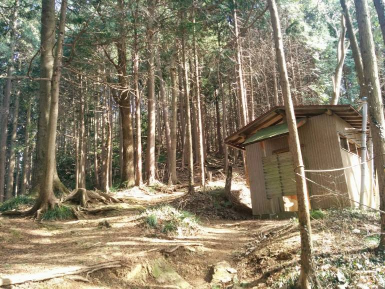 trail-up-behind-the-eatery