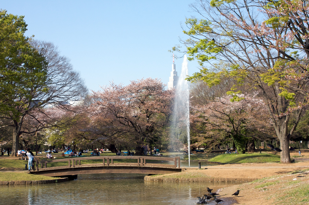 573e0e89c The Cheapo Guide to Yoyogi Park
