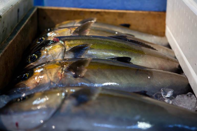 Buying Fish At Tsukiji Market