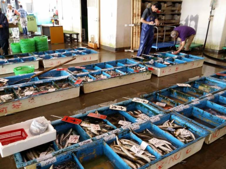 Apart from tuna, the fish market also deals with other fresh seafood caught in the region.