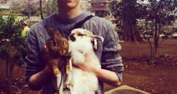 aaron rabbits