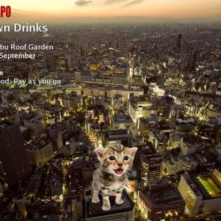 Tokyo Cheapo – Downtown Drinks #3