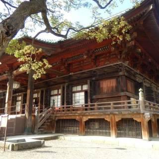 Gokokuji Temple Tokyo