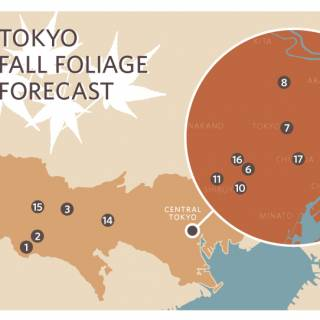 Infographic: Autumn Leaves Around the Tokyo Area