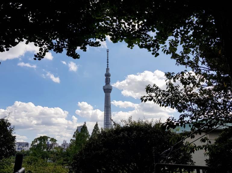 View of Tokyo Sky Tree from matsuchiyama Shoten