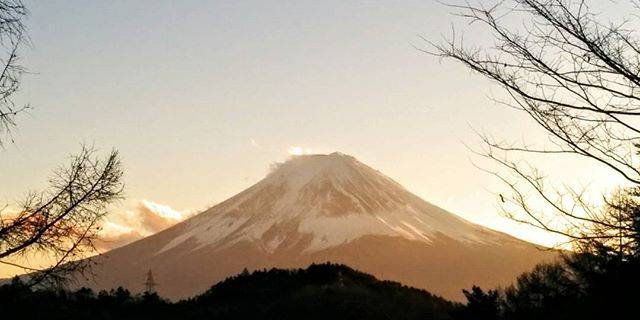 Mount Fuji + Hakone One Day Tour