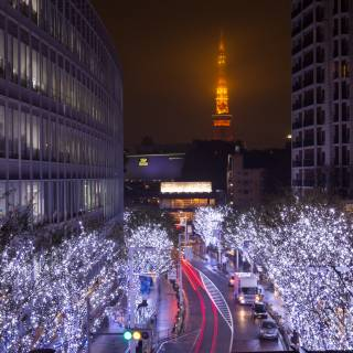 Roppongi Hills Christmas Illumination 2021