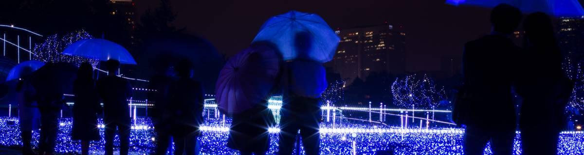 Tokyo Events This Week: Fall Leaves and Winter Illuminations