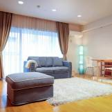Shibuya Luxury AirBnB Apartment 55 sqm