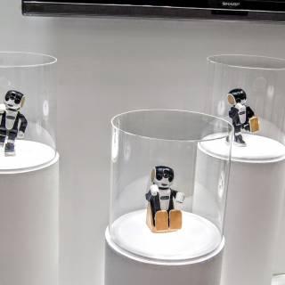 IREX International Robot Exhibition 2021