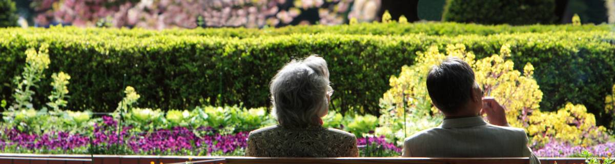 Tokyo Gardens: Top 5 to Visit
