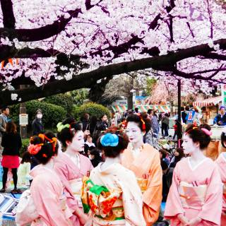 Cheapo Weekend for March 26-27: Sakura, Art, Markets and More