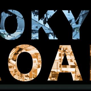 Tokyo Roar: The Many Personalities of Tokyo (Video)
