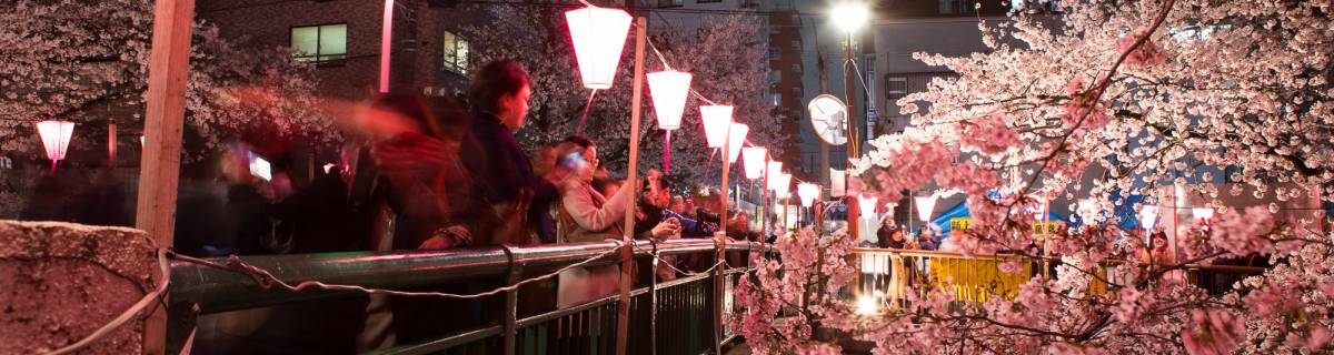 Tokyo Events This Week: Springy, Spring, Spring