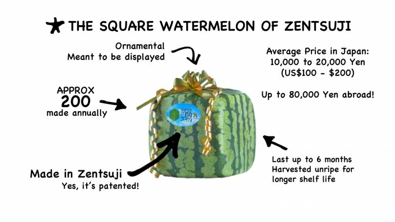 square watermelons japan