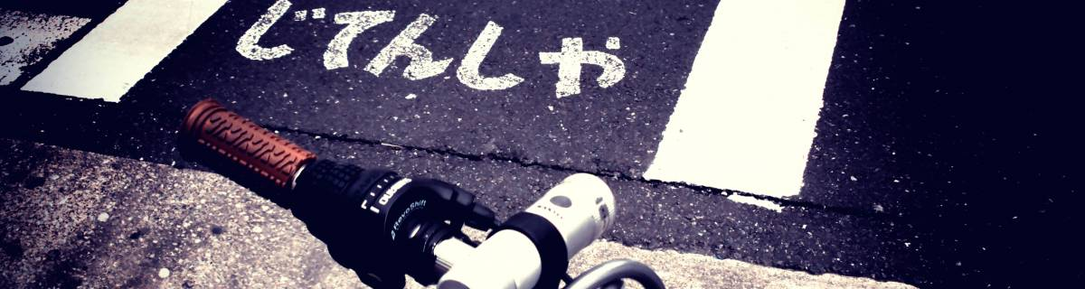 Small Group Bicycle Tour of Tokyo