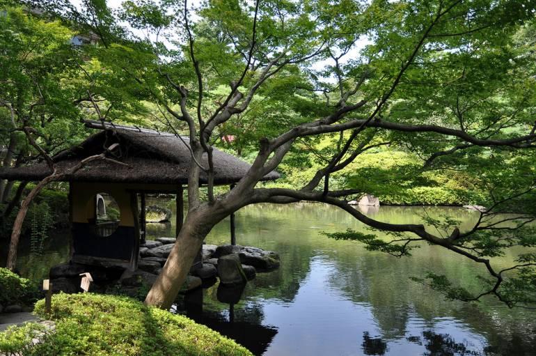 tokyo nature escape