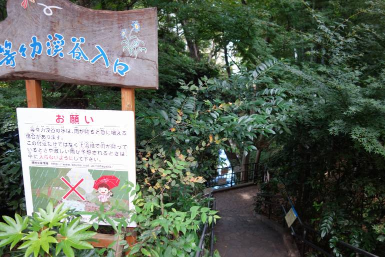 Path to Todoroki Valley