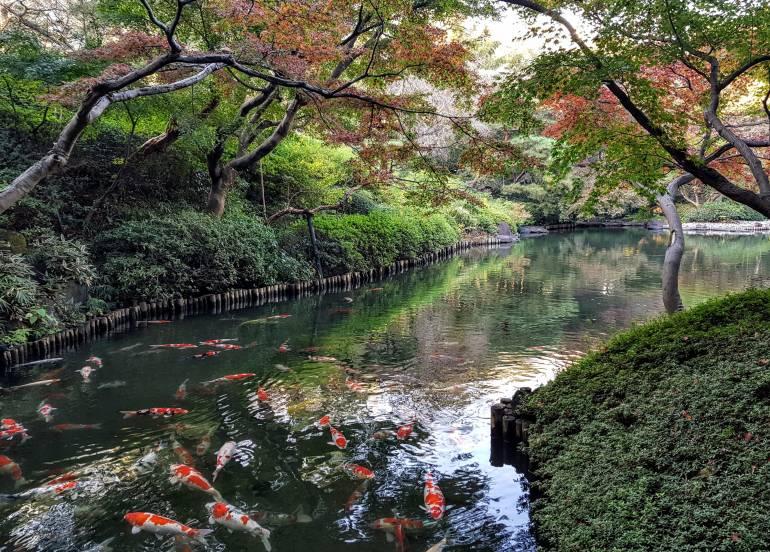 Happoen Pond