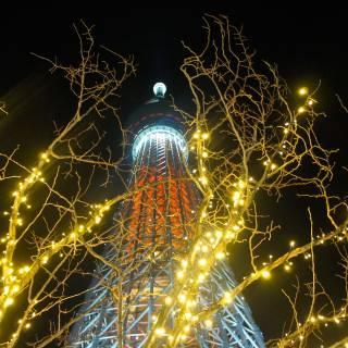 Tokyo Skytree Dream Christmas 2020