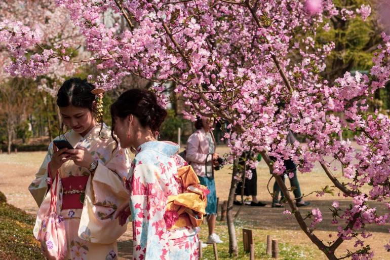 Asakusa Kimono Girls