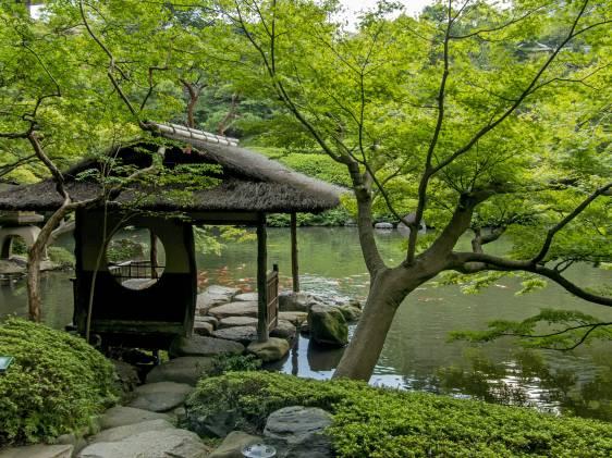 Zen garden in Tokyo